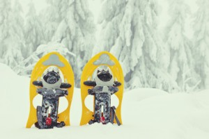 raquetas-de-nieve